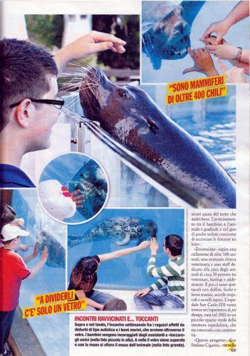Visto cura leoni marini 2