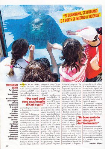 Visto cura leoni marini 3
