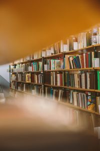 scaffali con molti libri